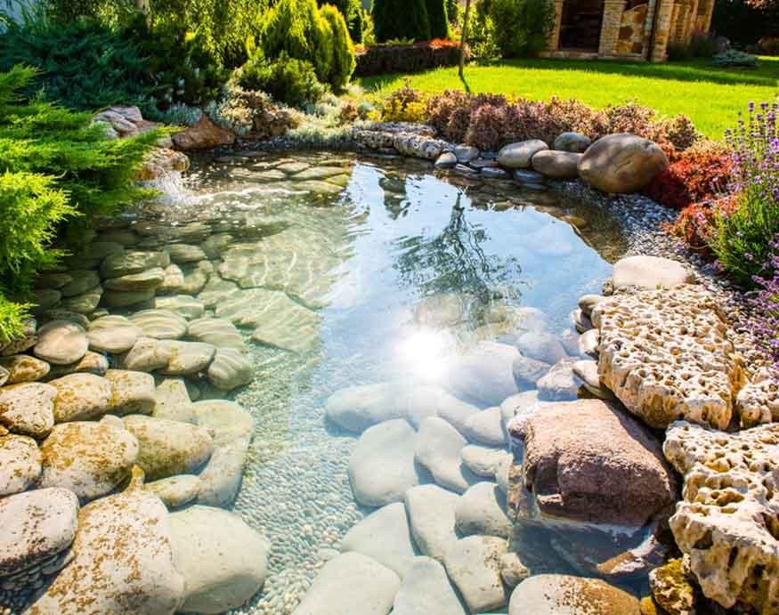 clean zen landscape pond