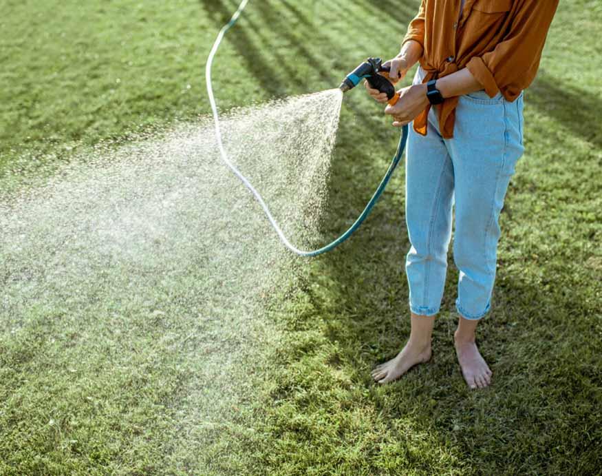 woman watering lawn