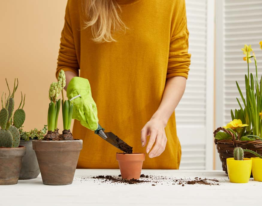 woman putting soil in a pot
