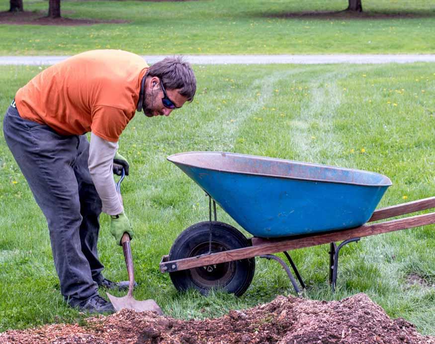 man collecting fertilizer to a wheelbarrow