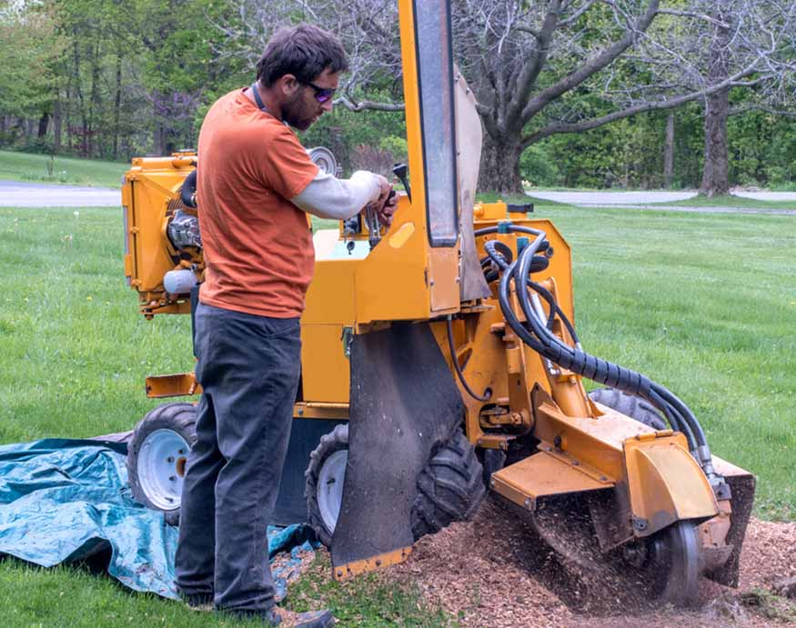 man using a heavy-duty stump grinder