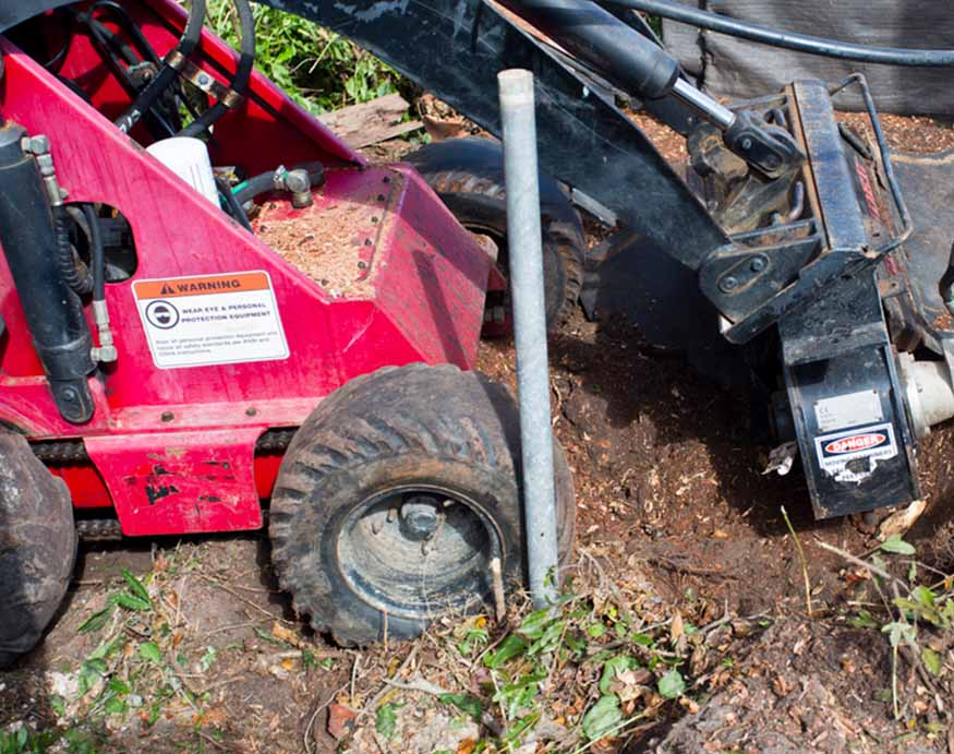 removing a stubborn tree stump using a residential stump grinder