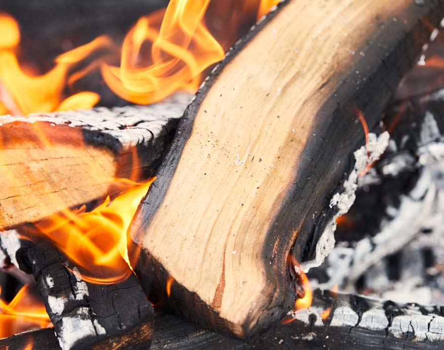 log burning in a fire pit