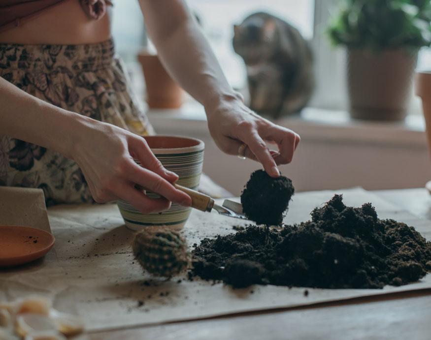 woman adding fresh potting mix
