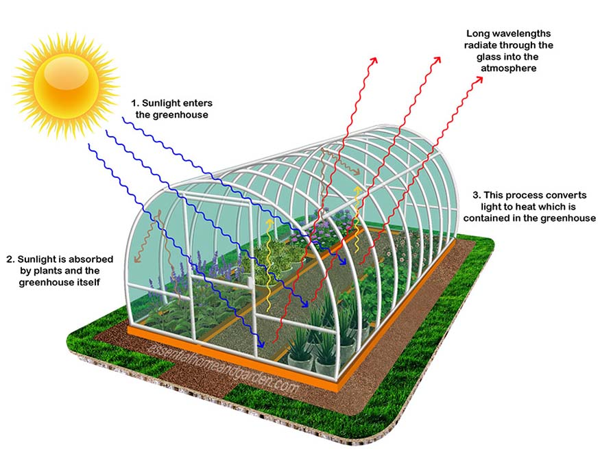 an illustration about how a greenhouse works
