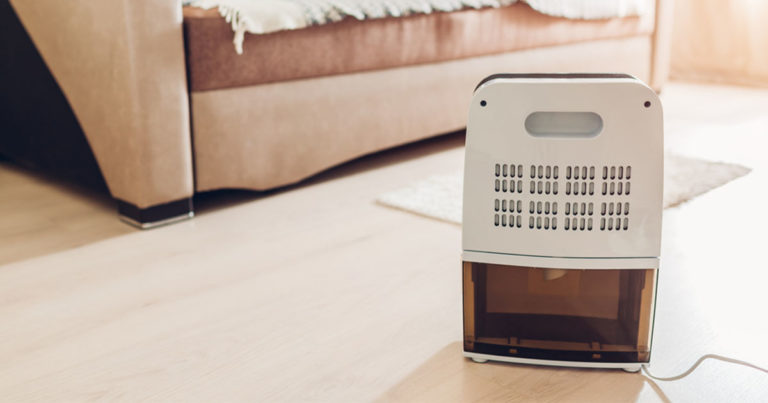 featured image for how to use a dehumidifier effectively article