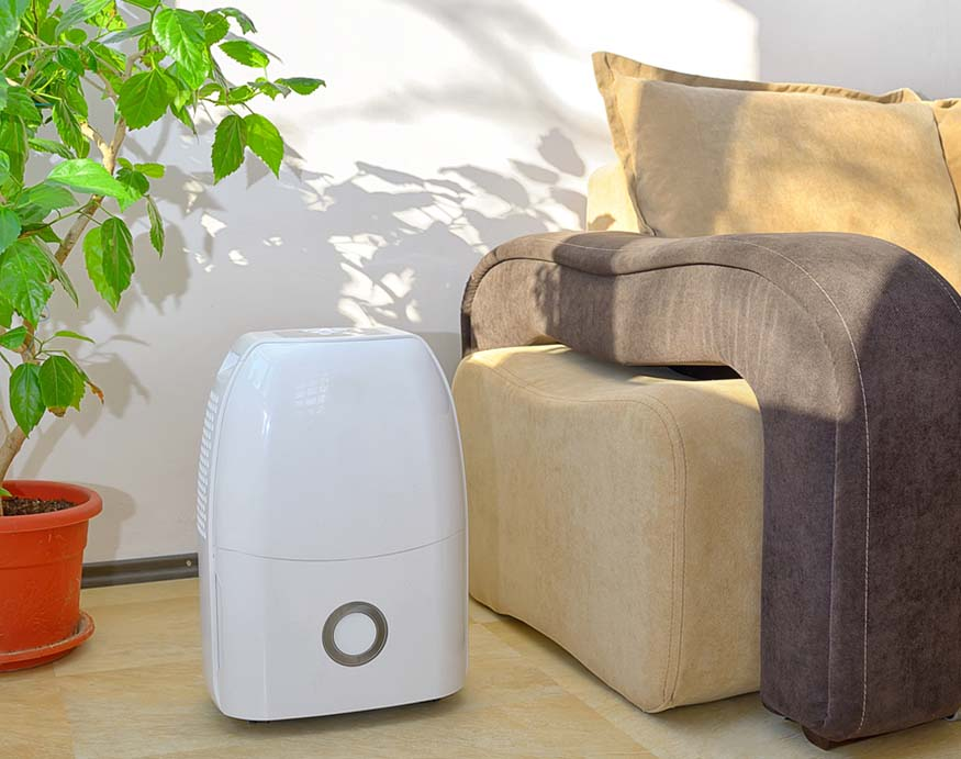 dehumidifier in the living room