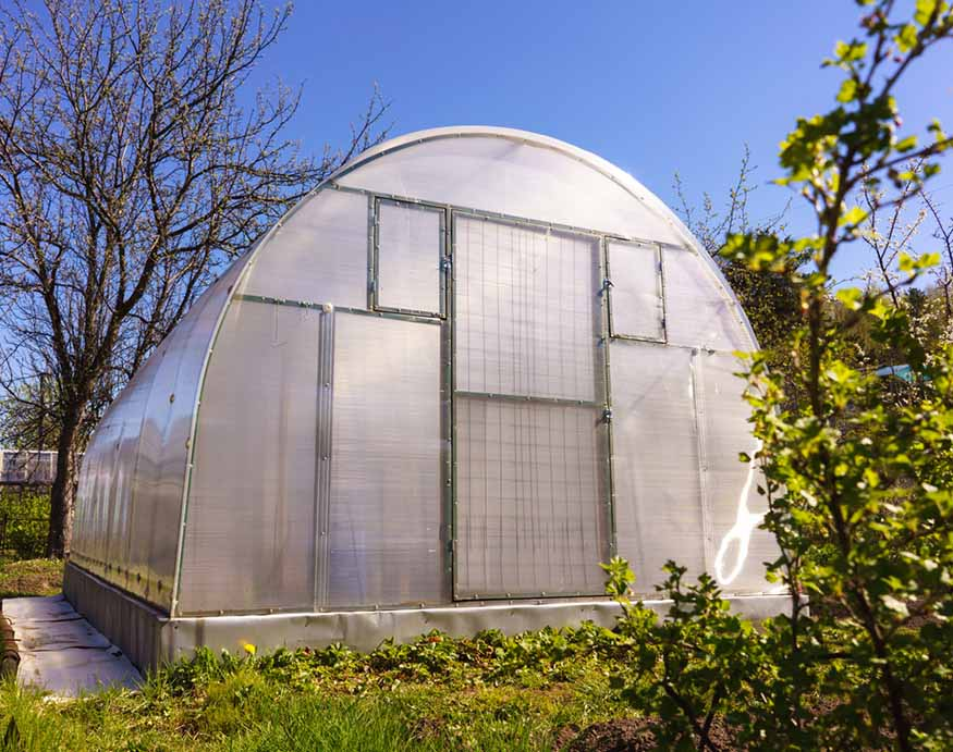 picture of a polycarbonate greenhouse in the backyard