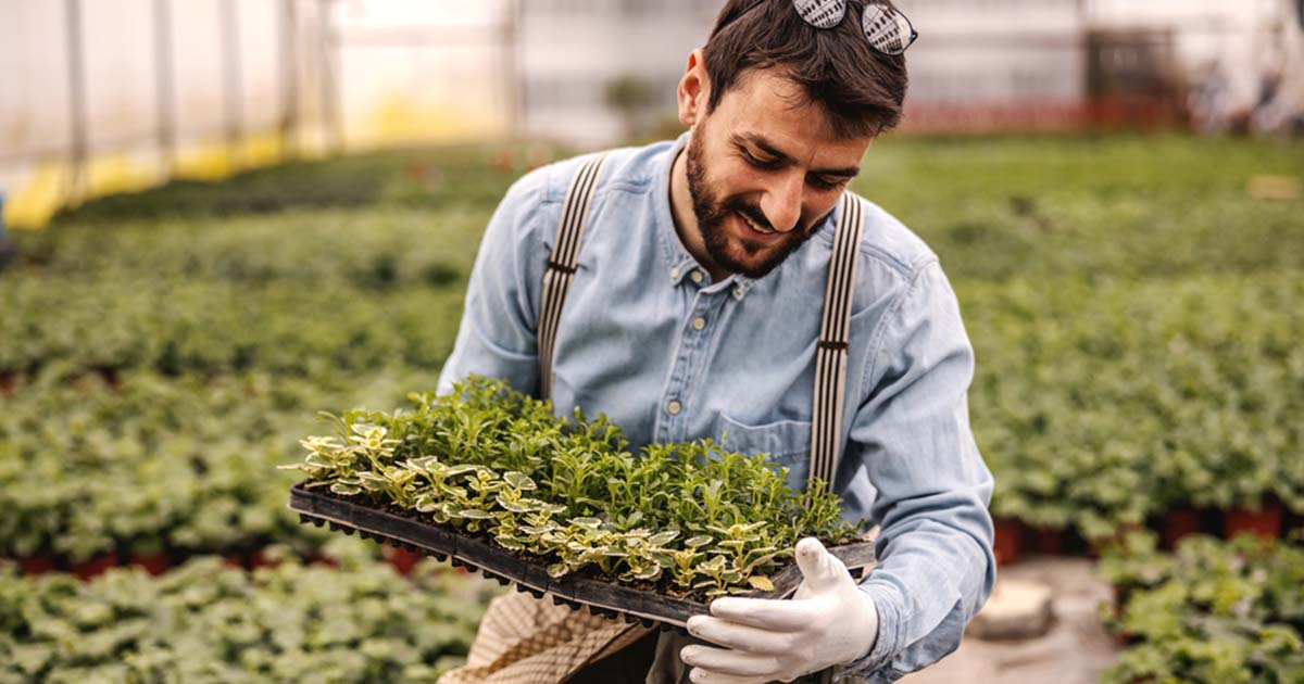 man holding a seedling tray while inside the greenhouse