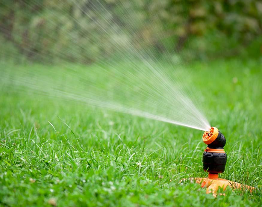 activated sprinklers in the garden
