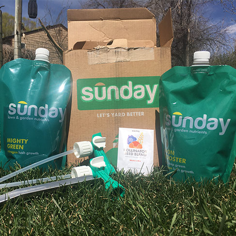 sunday lawn care reviews