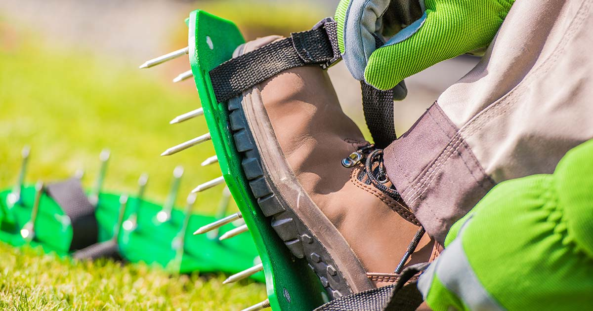 man putting spiked aerator shoes on