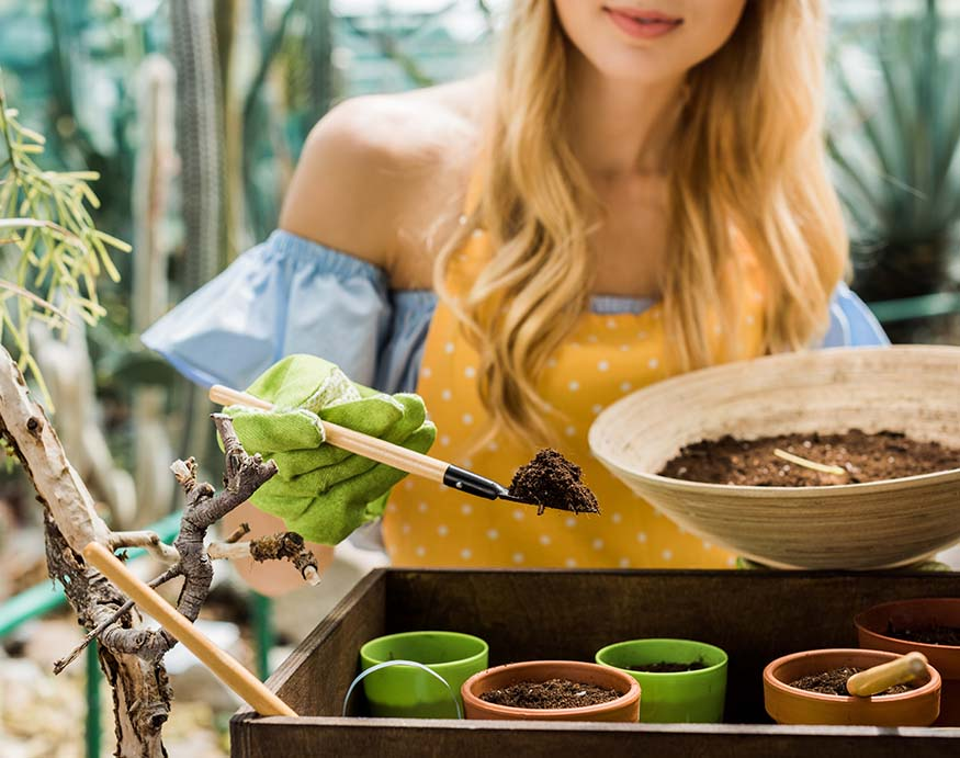 woman putting fresh soil to unglazed pots